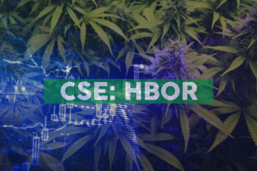 Harborside Inc. Announces Strategic Agreement in Cannabis Crop Steering Research