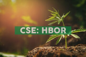 Harborside Announces Retail Partnership with RNBW, a New Premium Brand at the Intersection of Cannabis and Live Music