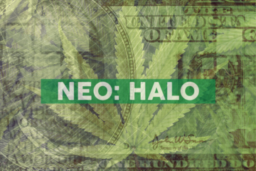 Halo Collective Expects to Almost Quadruple Oregon Sungrown Flower Output